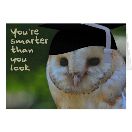 You're Smarter Than You Look Greeting Cards