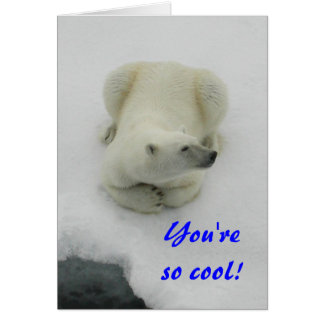 You're so cool - Polar Bear Valentine Card