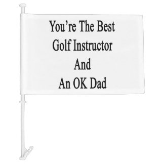 You're The Best Golf Instructor And An OK Dad Car Flag