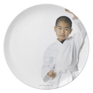 youth practicing martial arts 3 party plate