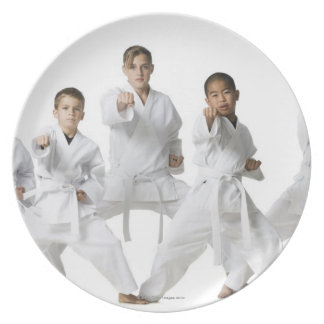 youth practicing martial arts 4 dinner plates