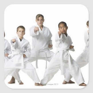 youth practicing martial arts 4 square sticker