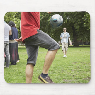 youth, young, friends, park, bbq, grass, trees, mouse mat