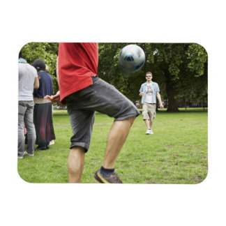 youth, young, friends, park, bbq, grass, trees, vinyl magnet