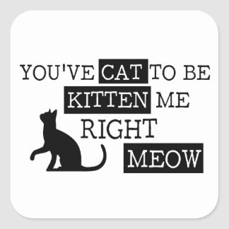 You've cat to be kitten meow funny square sticker