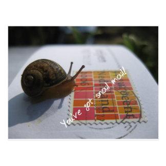you've got snail mail postcard