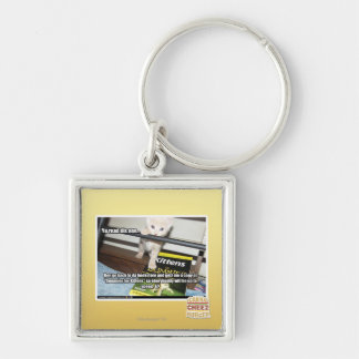 Yu red dis one.. Silver-Colored square key ring