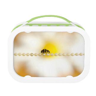 Yubo Lunchbox, Grey Lunch Box