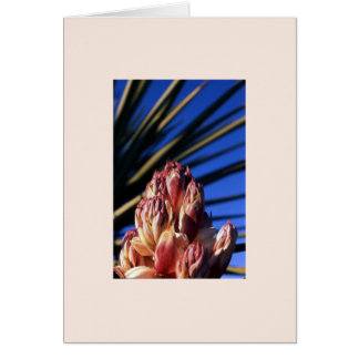 """""""Yucca #1"""" Card"""