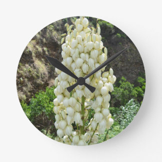 Yucca flowers in the Azores. Round Clock