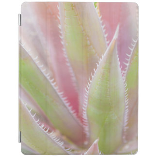 Yucca plant close-up iPad cover