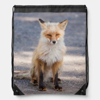 Yukon, Johnson's Crossing, Canada. Habituated 1 2 Drawstring Bag