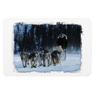 Yukon Quest Dogsled Team Rectangular Photo Magnet