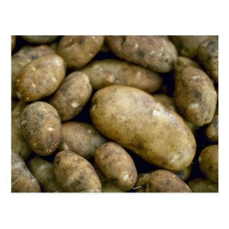 Yummy Potatoes Postcard
