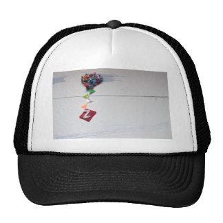 z.jpg cap