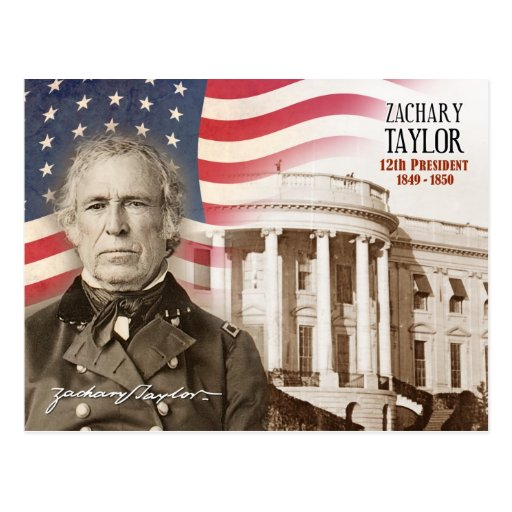 Zachary Taylor - 12th President of the U S  PostcardZachary Taylor President