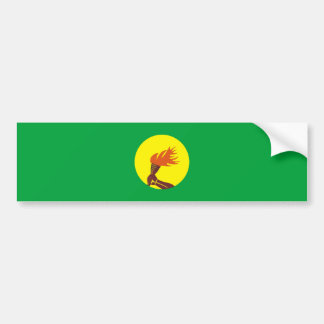 zaire congo country long flag nation symbol name bumper sticker