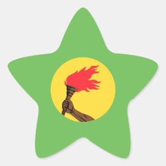 Zaire Flag Star Sticker
