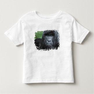 Zaire, Virungas National Park. Portrait of Toddler T-Shirt