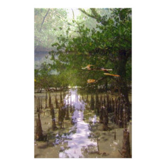 Zanzibar island beaches trees exotic landscape stationery