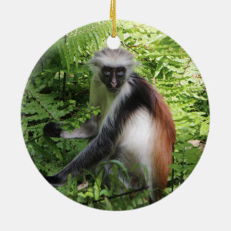 Zanzibar Red Colobus Monkey Ornament