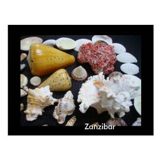 Zanzibar shells postcard