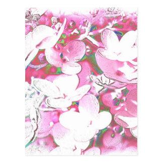 zart und rosa postkarte