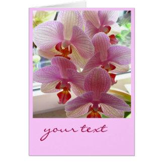 zarte Orchidee-Karte Greeting Card
