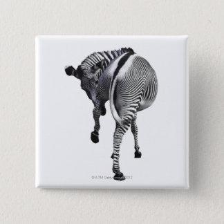 zebra 15 cm square badge
