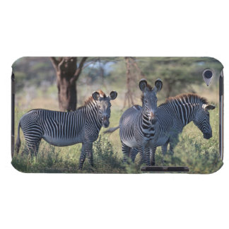 Zebra 2 barely there iPod cases