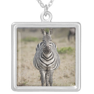 Zebra 2 silver plated necklace