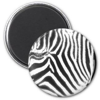 Zebra Abstract Magnet