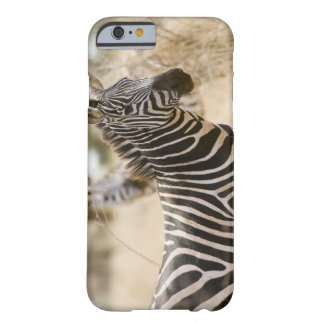 Zebra at the Meru National Park, Kenya. Barely There iPhone 6 Case