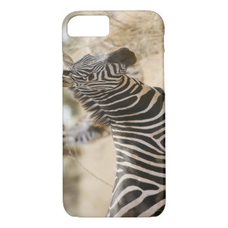 Zebra at the Meru National Park, Kenya. iPhone 8/7 Case
