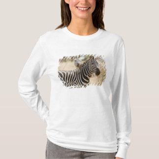 Zebra at the Meru National Park, Kenya. T-Shirt