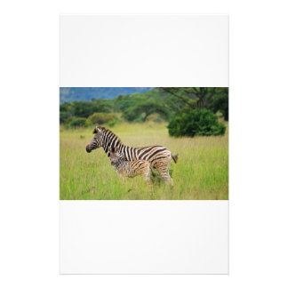 Zebra baby and mom stationery