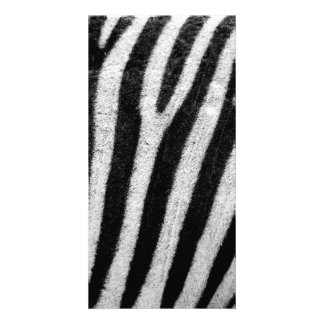 Zebra Black and White Striped Skin Texture Templat Personalized Photo Card