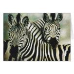 """""""Zebra Buddies"""" Cards"""