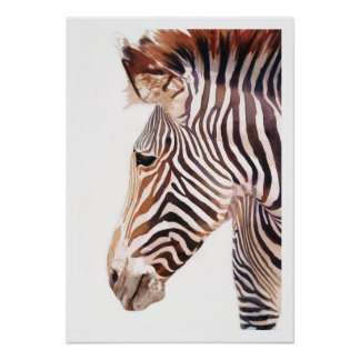 Zebra Bust Zebra Wildlife Watercolor Print