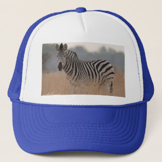 Zebra caps