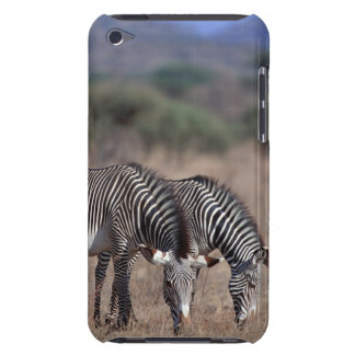 Zebra Barely There iPod Case