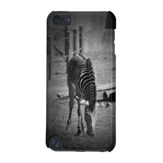 zebra iPod touch 5G cover