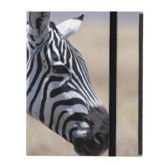 Zebra Cases For iPad