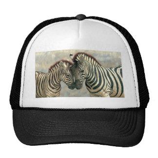 zebra-clip-art-3 trucker hat