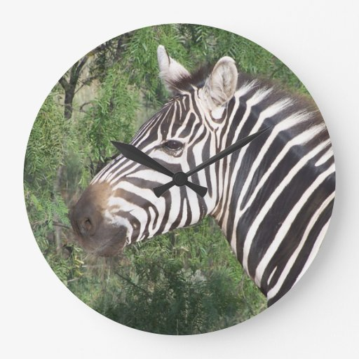 Zebra Wallclocks