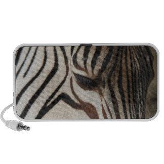 Zebra, close-up iPod speaker