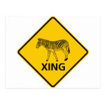 Zebra Crossing Highway Sign Post Card