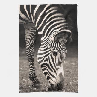 Zebra Eating Grass Tea Towel