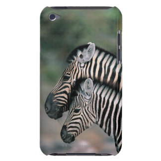 Zebra (Equus burchelli), Etosha National Park, iPod Touch Case-Mate Case