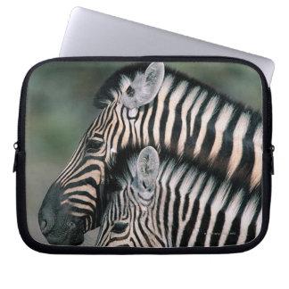Zebra (Equus burchelli), Etosha National Park, Laptop Computer Sleeves